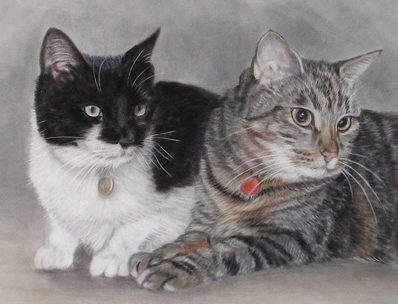 Cat Portraits by Lorraine Gray