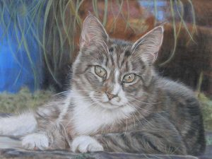 Custom Cat Portraits