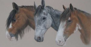 Commissioned Horse Portraits by Lorraine Gray