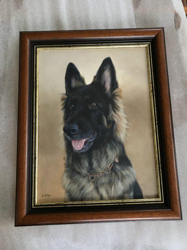 German Shepherd Portrait In Oils