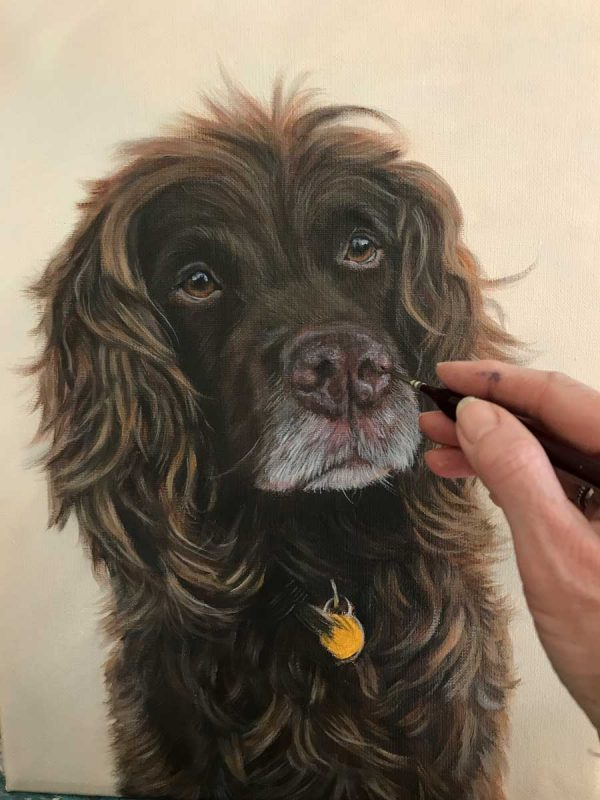 Applying colour to the Spaniel Oil Portrait