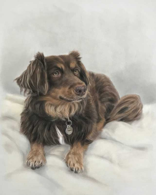 Dog Portraits in Pastels