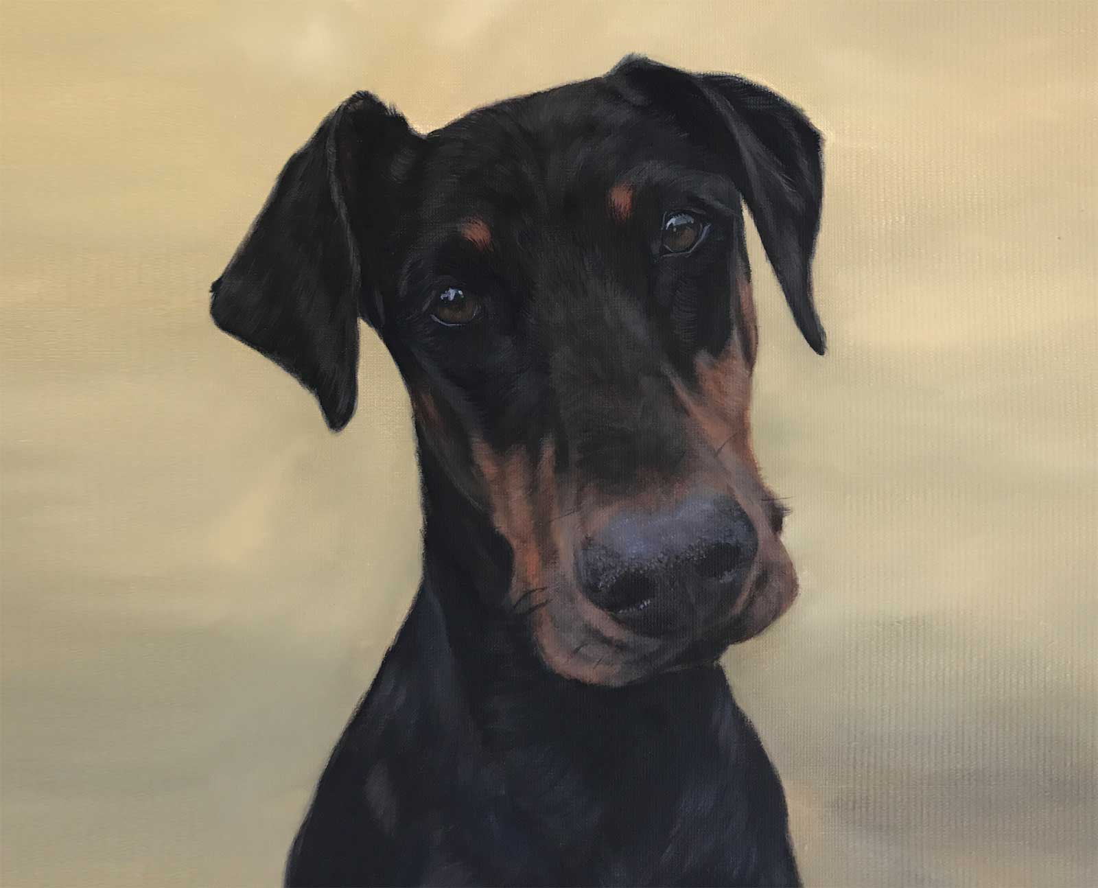 Doberman Portrait in oils