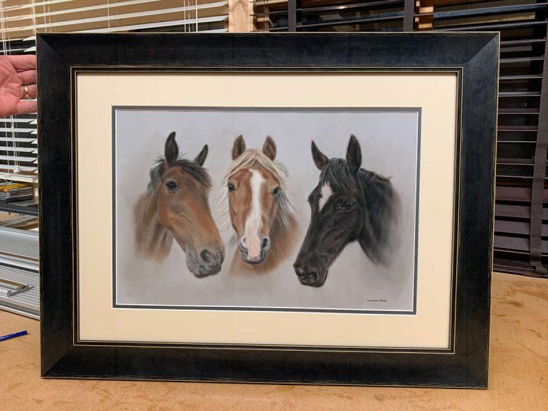 portraits of pets - horses framed