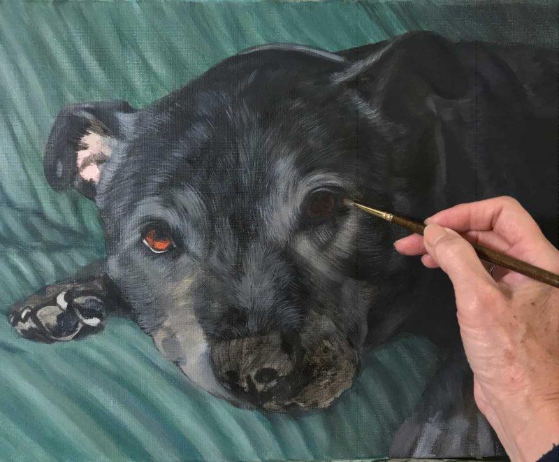portrait of pets - oil painting