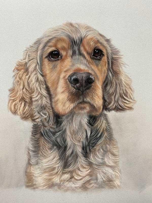 Pet Portraits UK - Lorraine Gray
