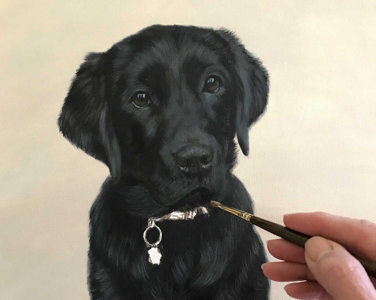 Black Labrador Portrait Oils