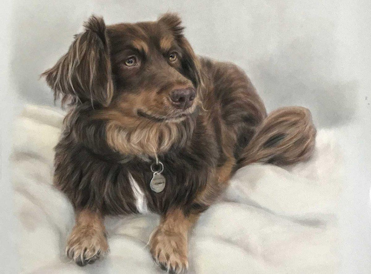 pet portrait commission process