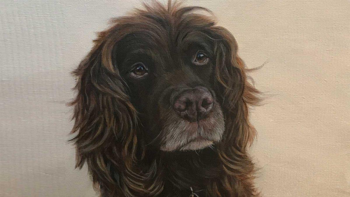 Spaniel Portraits in Oils by Pet Portrait Artist Lorraine Gray